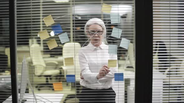 Thumbnail for Senior Female Corporate Employee Mapping Project on Glass Wall