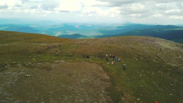 Thumbnail for Group Of People At Horse Riding Trips In Altai Mountains