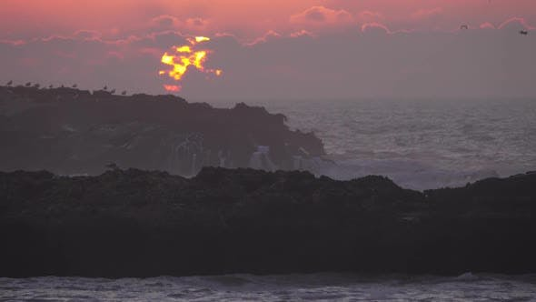 Thumbnail for Seagulls Over Rocks in Sea Against Sunset