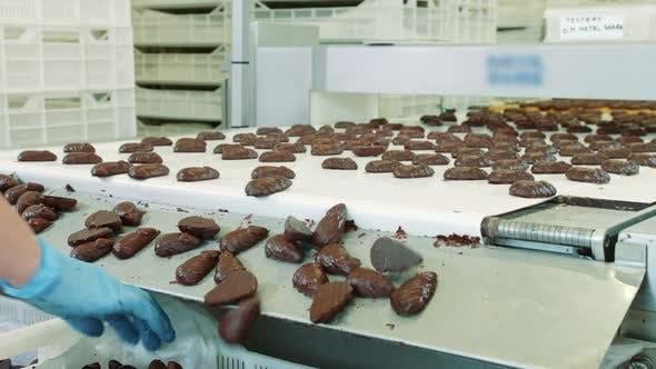 Thumbnail for Bündel leckere Schokoladen-Süßigkeiten liegen auf dem Förderband in der Süßwarenfabrik. Süßigkeiten-Fabrik.