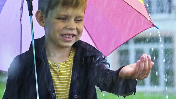 Thumbnail for Preschool Boy Catching Raindrops
