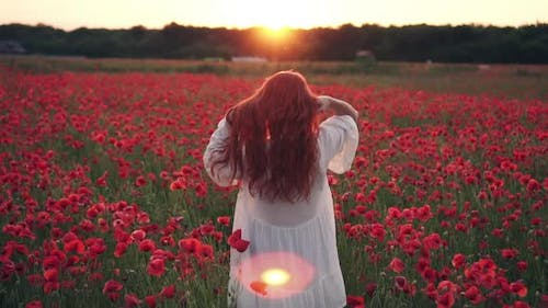 Redhaired Woman Throws Her Hair Up Standing in Field of Poppies in Rays of Setting Sun Rear View