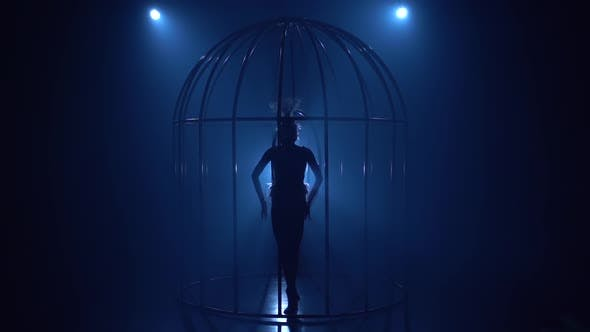 Thumbnail for Aerial Acrobatics on a Rotating Hoop in Cage in a Dark Room