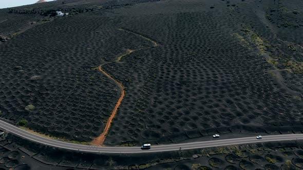 Vineyards on Volcanic Soil in Lanzarote Aerial View