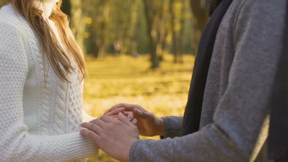 Cover Image for Two Loving Hearts Warming Each Other on Cool Autumn Day Tenderness and Love