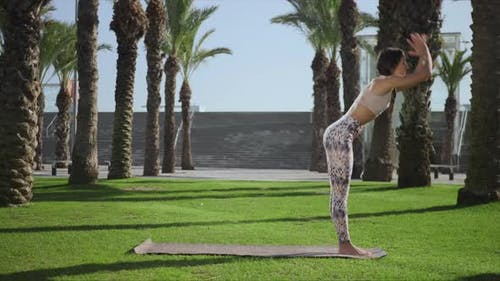 Woman Doing Palm Tree Pose in Park. Girl Practicing Yoga Outdoors