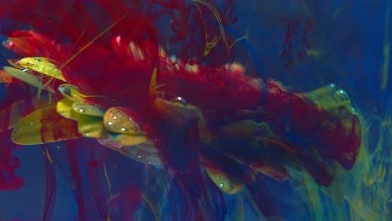 Thumbnail for Schöne Blume Unterwasser mit roter Tinte um sie herum, bunte Kunstshow,
