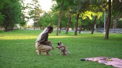Owner Feeding Pet Outdoors Encouraging Smart Dog for Good Command Execution with Bone Dog Snack
