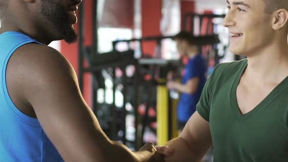 Thumbnail for Afro-American and Caucasian Men Shaking Hands in Gym, International Friendship