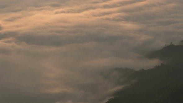 Thumbnail for Fog Morning