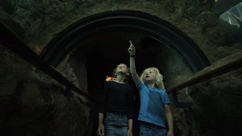 Erstaunte Geschwister, die entlang des Ozeanarium-Tunnels gehen und Meerestiere erkunden