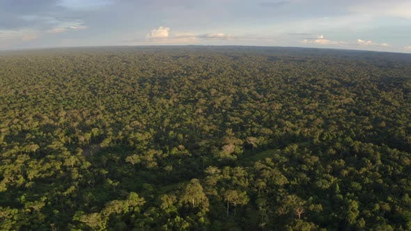 Aerial view of a large tropical forest with patches of deforested rainforest