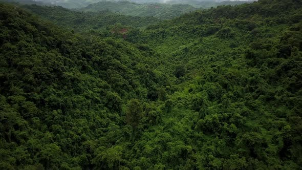 Thumbnail for Aerial View of Lush Green Rain Forest Mountain 30