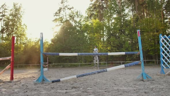 Thumbnail for Show Jumping in the Horse Club