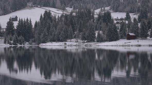 Thumbnail for Coniferous trees reflected in water