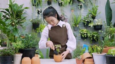 Woman shoveling a plant