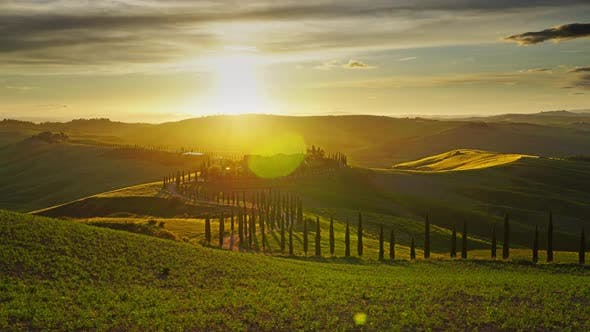 Tuscany Landscape Road Cypresses Hill Sunset