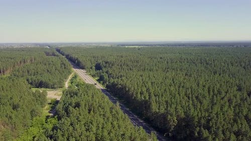 Aerial: Cars Move Along the Highway Through Coniferous Forest. In the Distance You Can See the