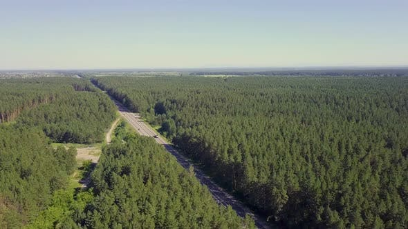 Thumbnail for Aerial: Cars Move Along the Highway Through Coniferous Forest. In the Distance You Can See the