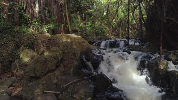 Waterfall in rainforest, Oahu, Hawaii