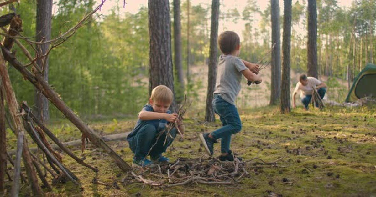 Two Boys Collect Sticks in the Woods for a Large Family Campfire Against the Backdrop of a Tent and