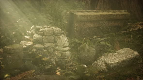 Thumbnail for Hoary Ruins of Ancient City in Pine Forest