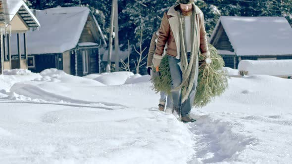 Thumbnail for Family Carrying Wild Christmas Tree Home