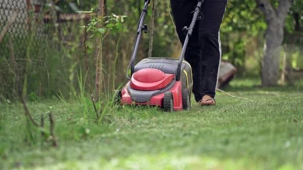 Thumbnail for Gardener cutting lawn grass. Home garden grass cutting with lawn mower