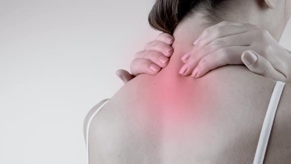 Pain in the Back. Backache
