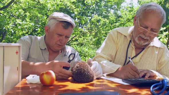 Thumbnail for Aged Man Looks at Hedgehog and Dictates Results To Friend