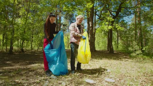 Charity Eco Activists Picking Up Plastic Waste and Garbage in Woodland