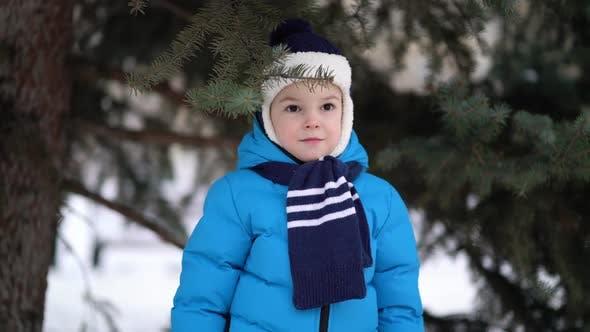 Thumbnail for Niedlich vier Jahre alt Junge Porträt auf Winter Wald