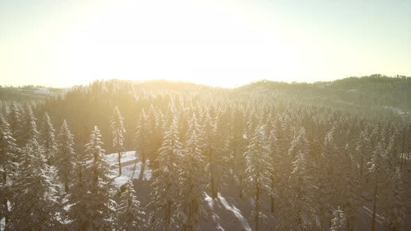 Thumbnail for Colorful Winter Sunrise in the Mountains