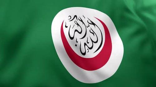 OIC Flag / Organisation of Islamic Cooperation Flag - 4K