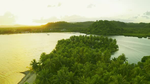Thumbnail for Palms Trees on the Sunny Beach at Sunset Time Aerial View