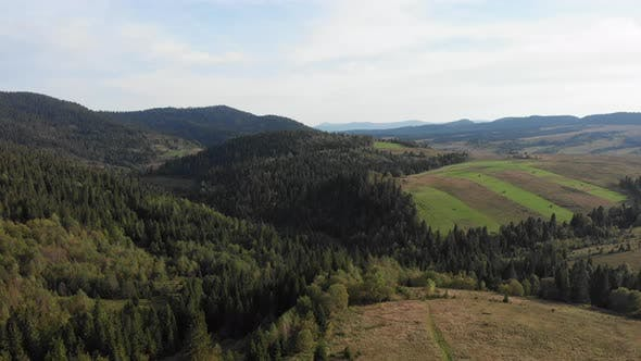Thumbnail for Mountain hills from bird eye view. Green pine trees forest, drone view