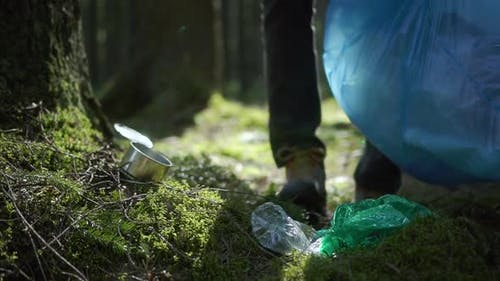 Plastic Pollution in Grass