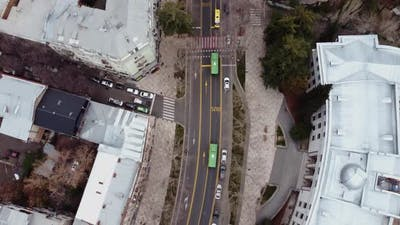 Bus Line And Buses Aerial
