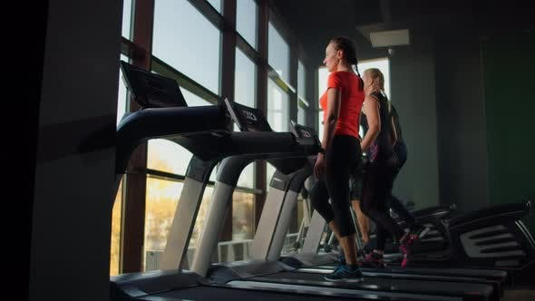 Cover Image for A Group of People Walking on Treadmills Near a Large Panoramic Window. Group Cardio Workout. Start