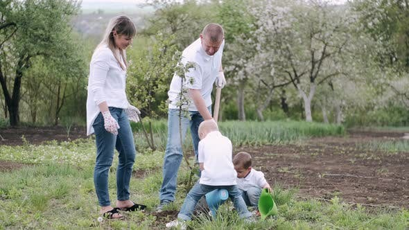 Cover Image for Parents and Two Little Sons Planting Tree in Village