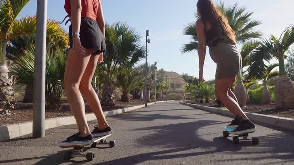 Cover Image for Two Girls on Skateboards in Short Shorts Rides Along the Road Along the Beach and Palm Trees in Slow