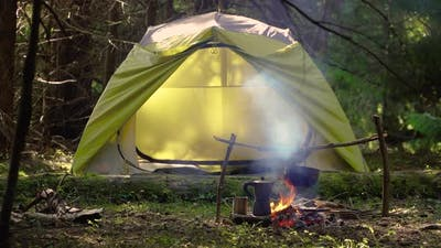 Camp in a Beautiful Forest
