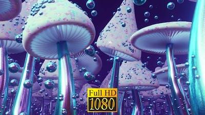 Mushroom Country HD