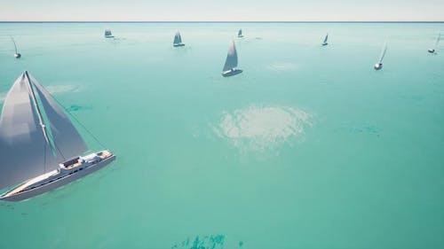 Sport Sailing Regatta on the Blue Clear Ocean