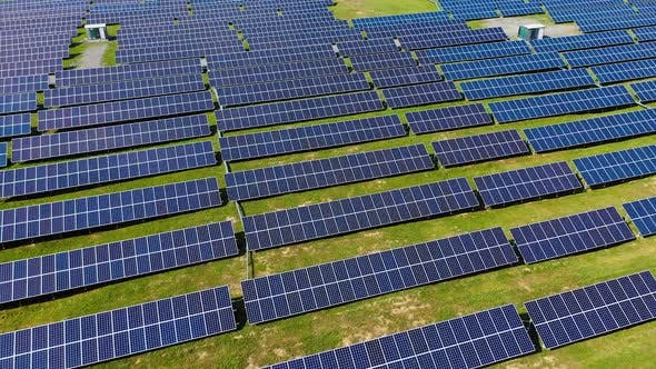 Modern electricity farm outdoors. A lot of solar panels in rows on the green grass in summer