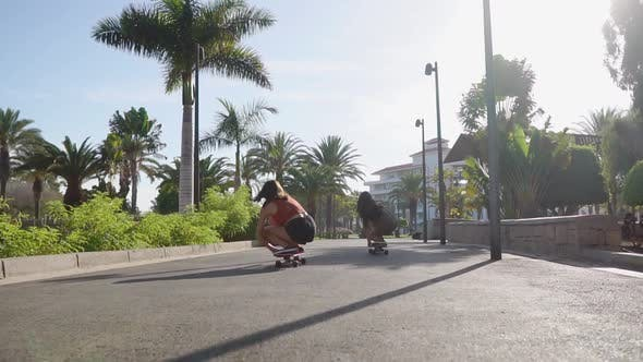 Thumbnail for Two Girls Roll on the Boards on the Asphalt Path Along the Palm Trees