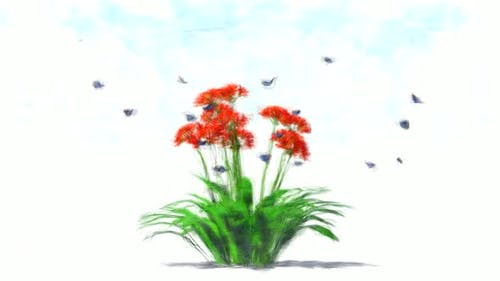 Flower and Blue Butterflies Stop Motion