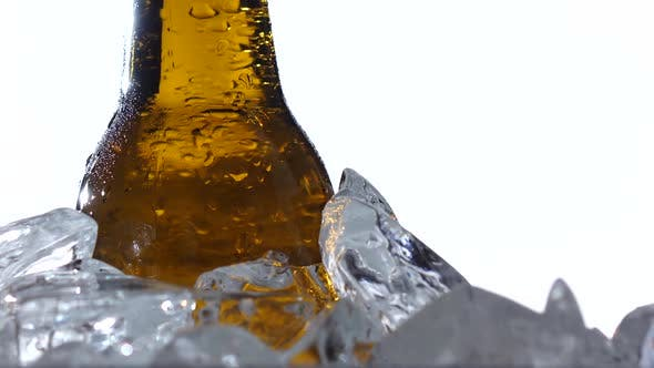 Thumbnail for Festival of Beer Capacity Are Bottle of Beer in the Ice. White Background