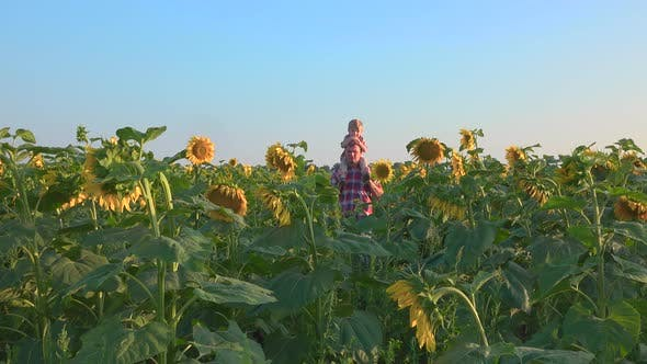 Thumbnail for Farmer Walking With His Son in Field of Sunflowers