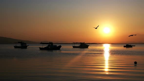 Cover Image for Sunset And Fishing Boats In Calm Sea 1